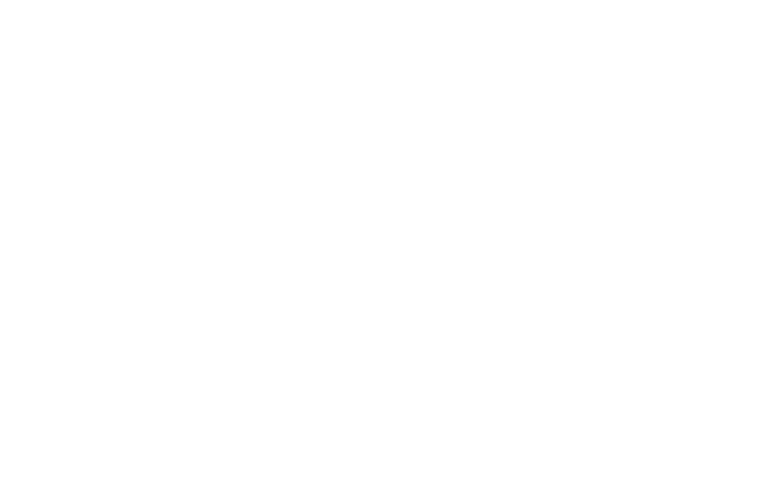 Fly Luxury